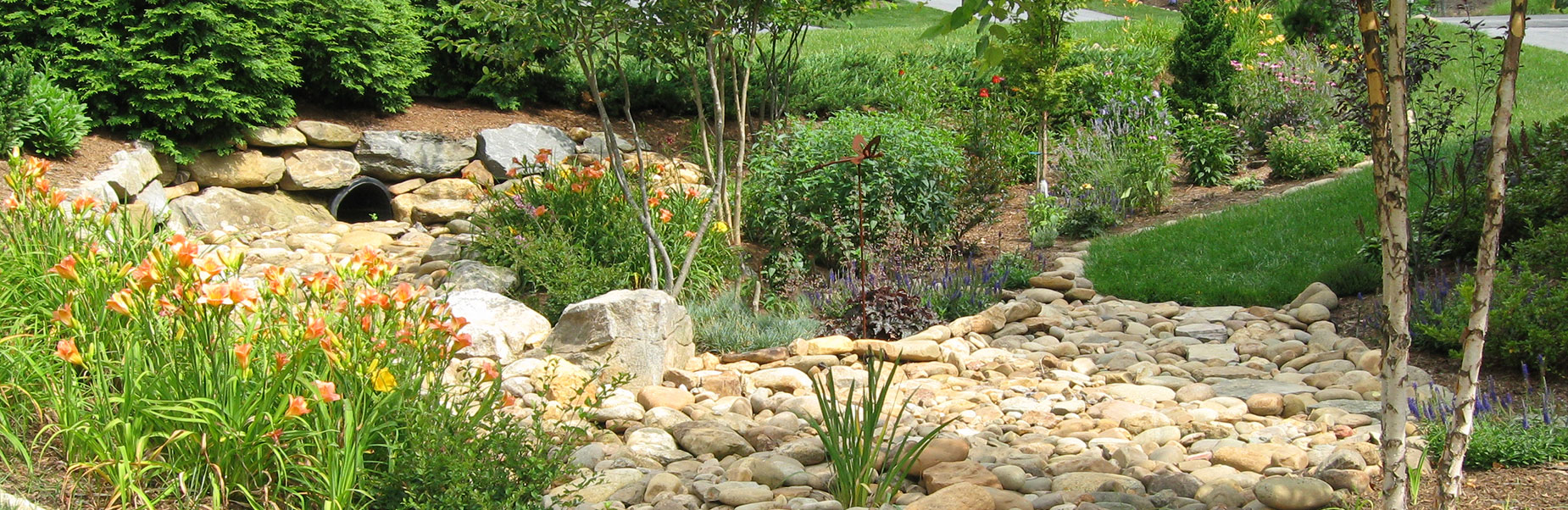 Cohesion Land Design offers professional design and horticultural knowledge