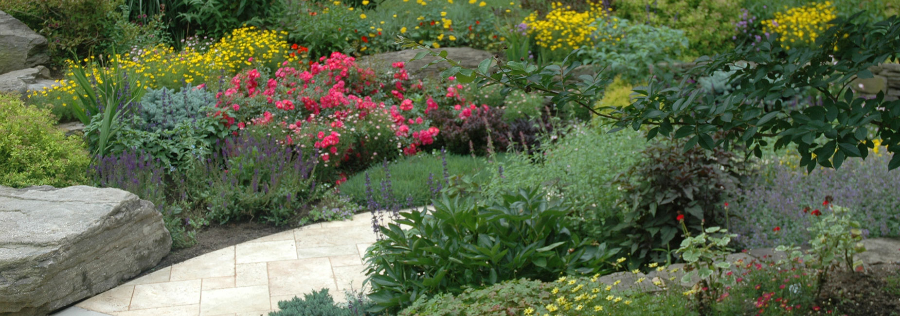 Contact Brenda Alexander, Cohesion Land Design in Kelowna, BC, offers professional landscape design services.